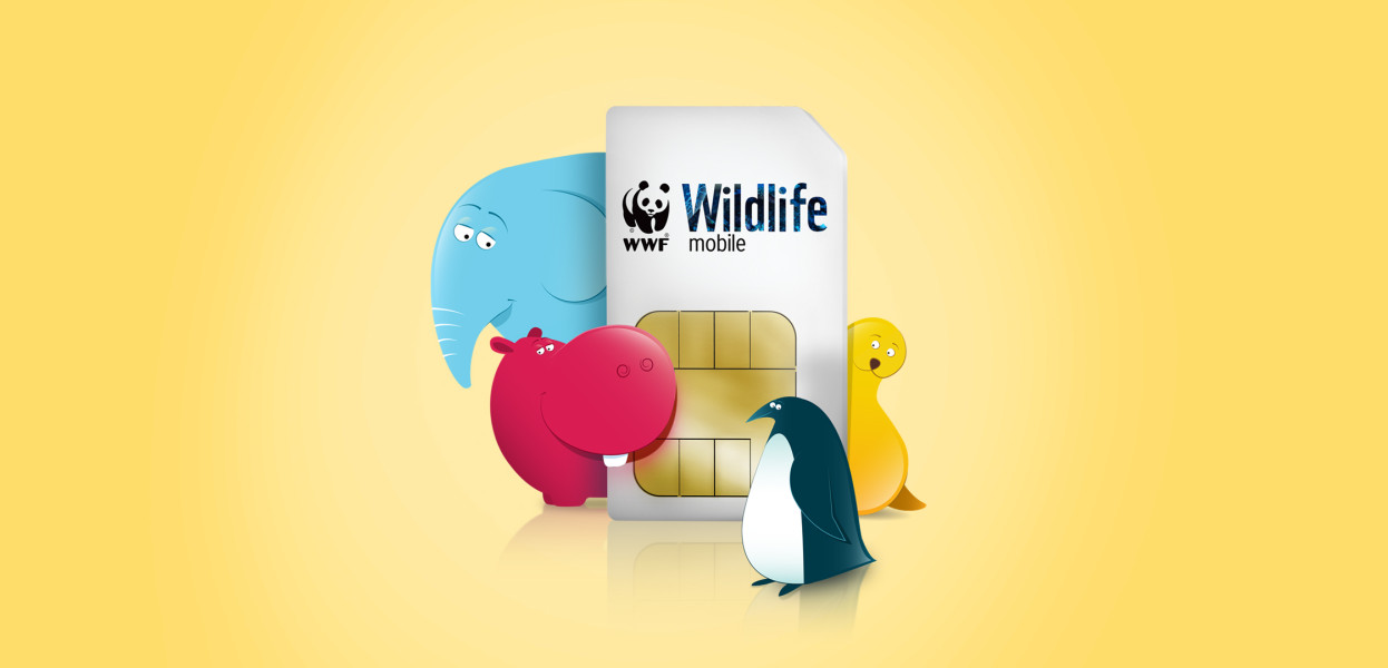WildLife Mobile: Case Study